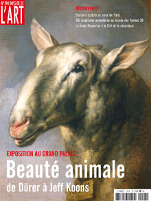 Beauté Animale
